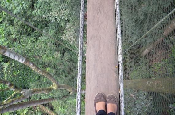 Ya, saya masih boleh naik Canopy Walk yang beribu kaki tinggi..ya itu kaki saya..:P
